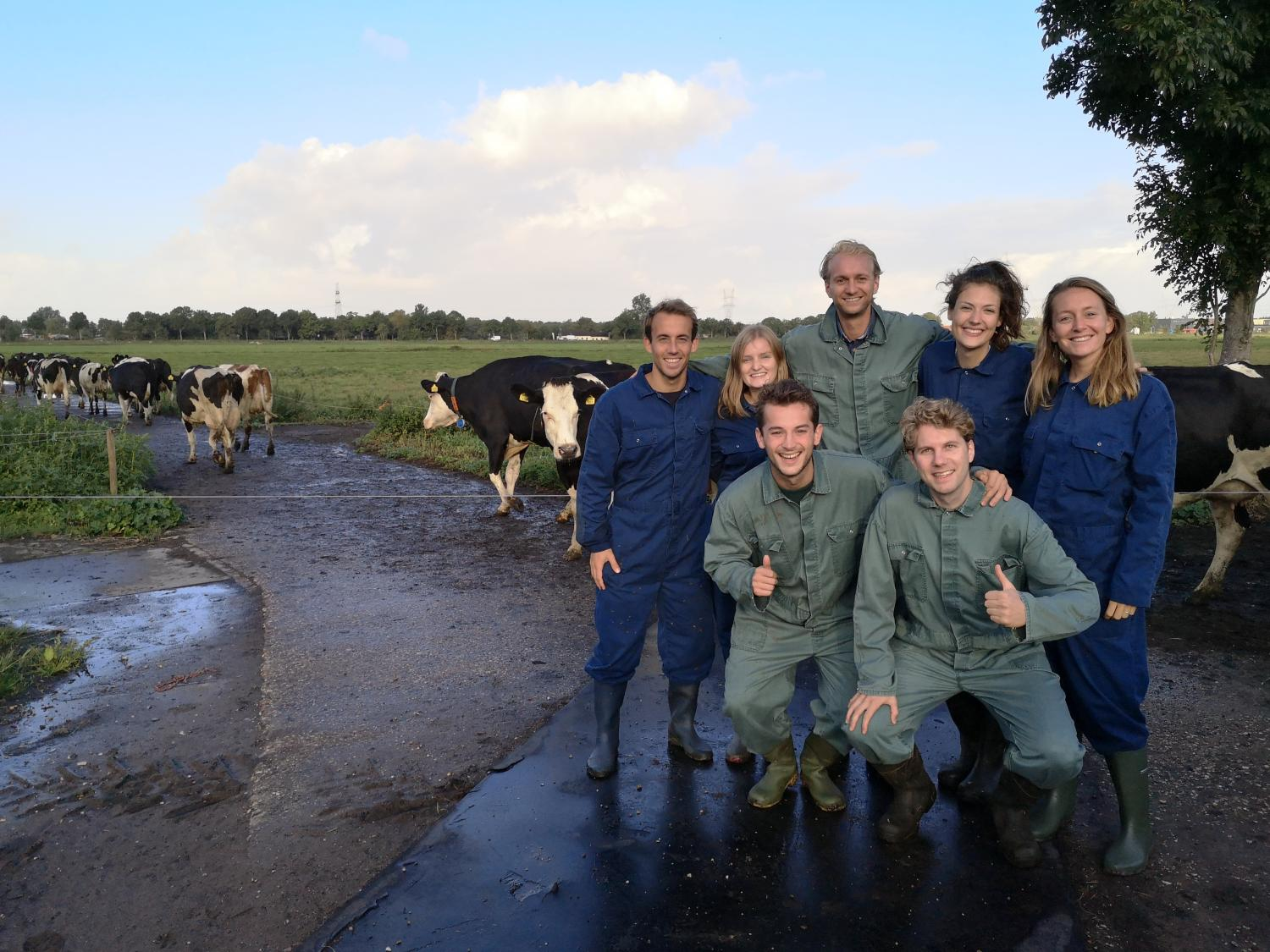 Trainees at FrieslandCampina