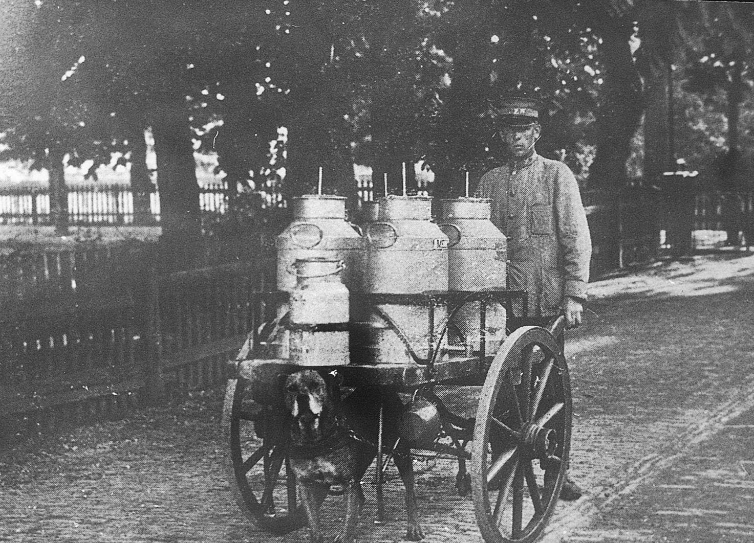 Image of a farmer pushing a cart of milk